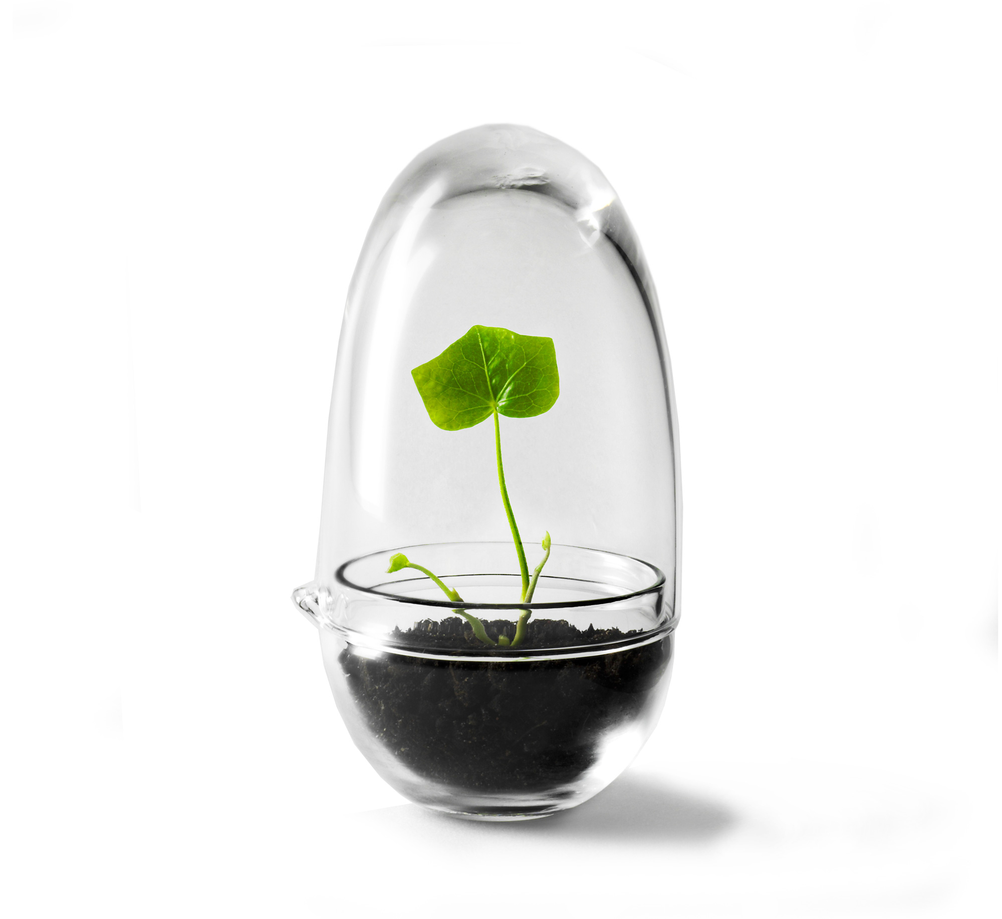 Grow Mini Invernadero Design House Stockholm | Tienda online de decoración nórdica y muebles nórdicos | Aixo
